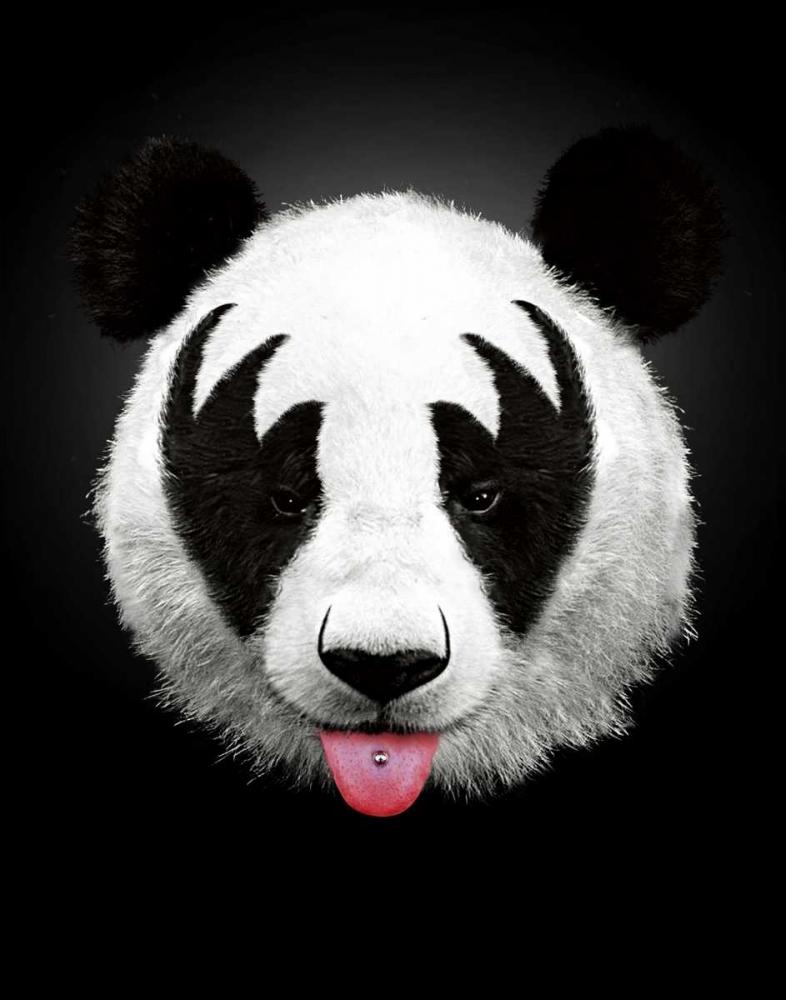Panda Rocks Farkas, Robert 23322