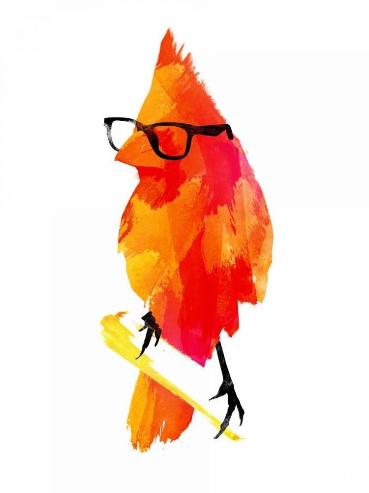Punk Bird Farkas, Robert 32848