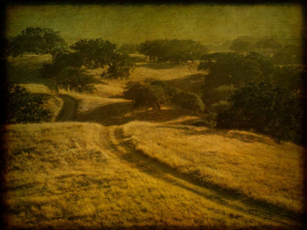 Ranch Road and Oak Savannah Guion, William 66062