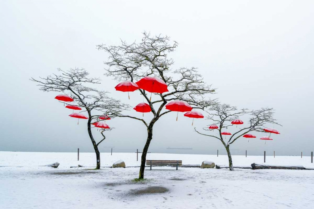 Red Umbrellas Kostka, Vladimir 66162
