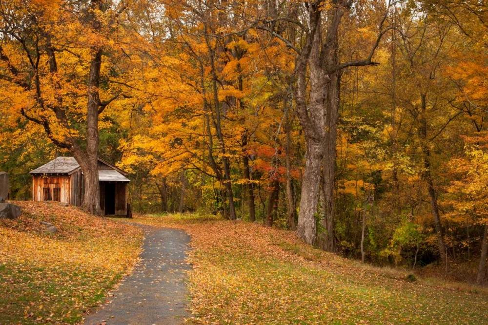 Autumn Home Mikaels, Natalie 33090