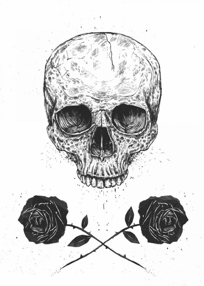 Skull N Roses Solti, Balazs 107366