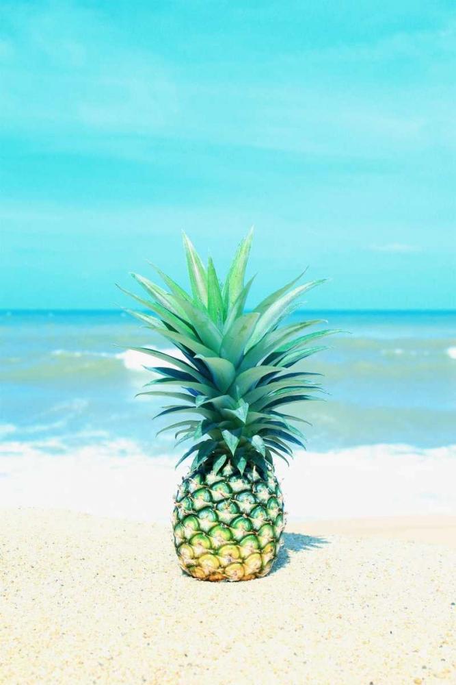 Pineapple on the Sand Tai Prints 161217