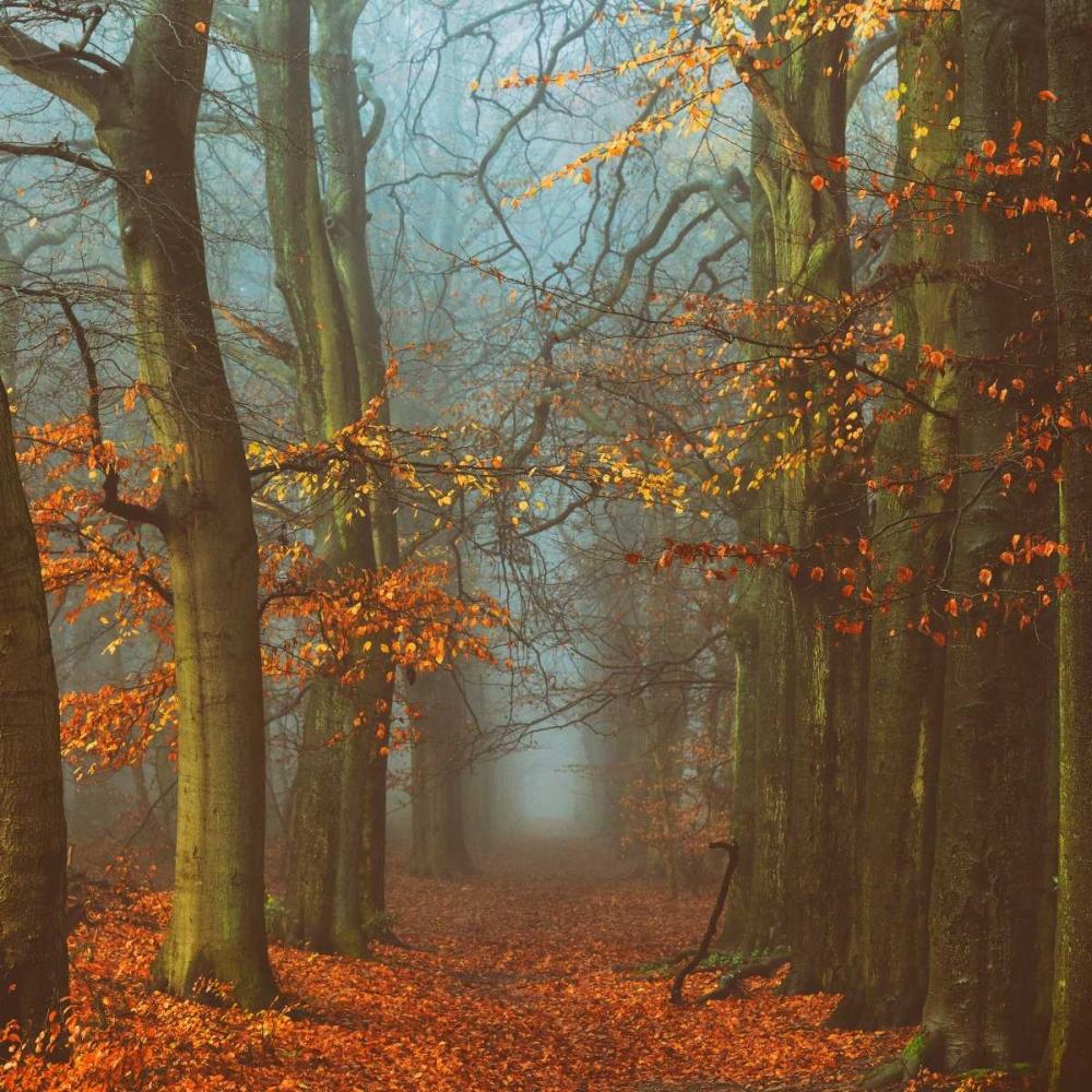 Path of The Mystics Van de Goor, Lars 82753