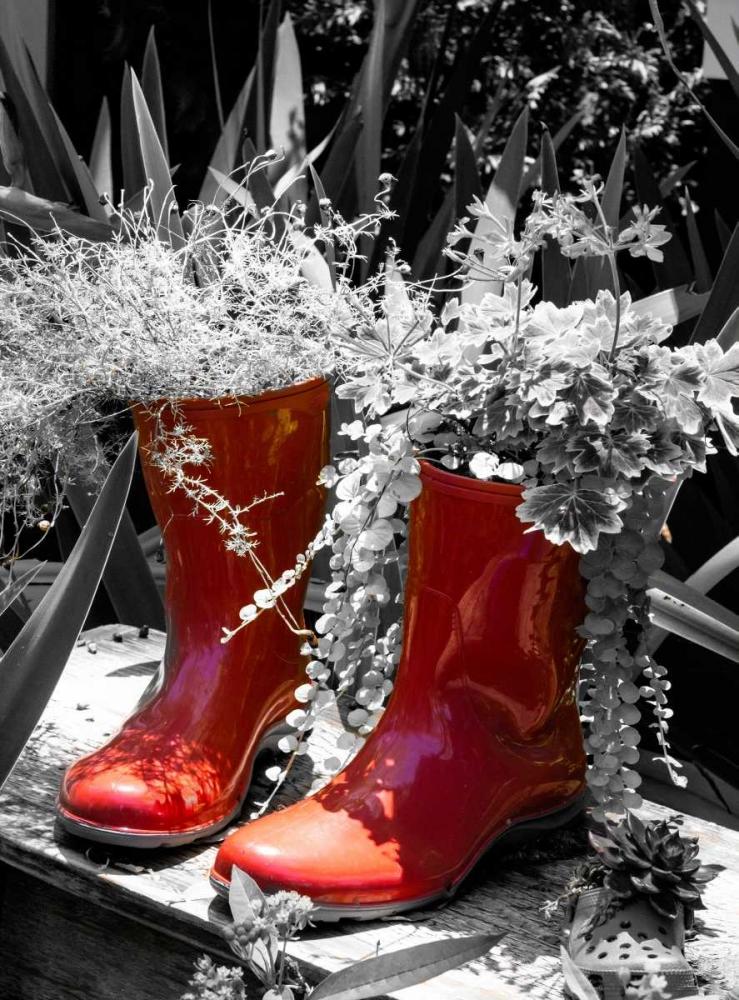 Rain Boots Border Navas, Emily 51464