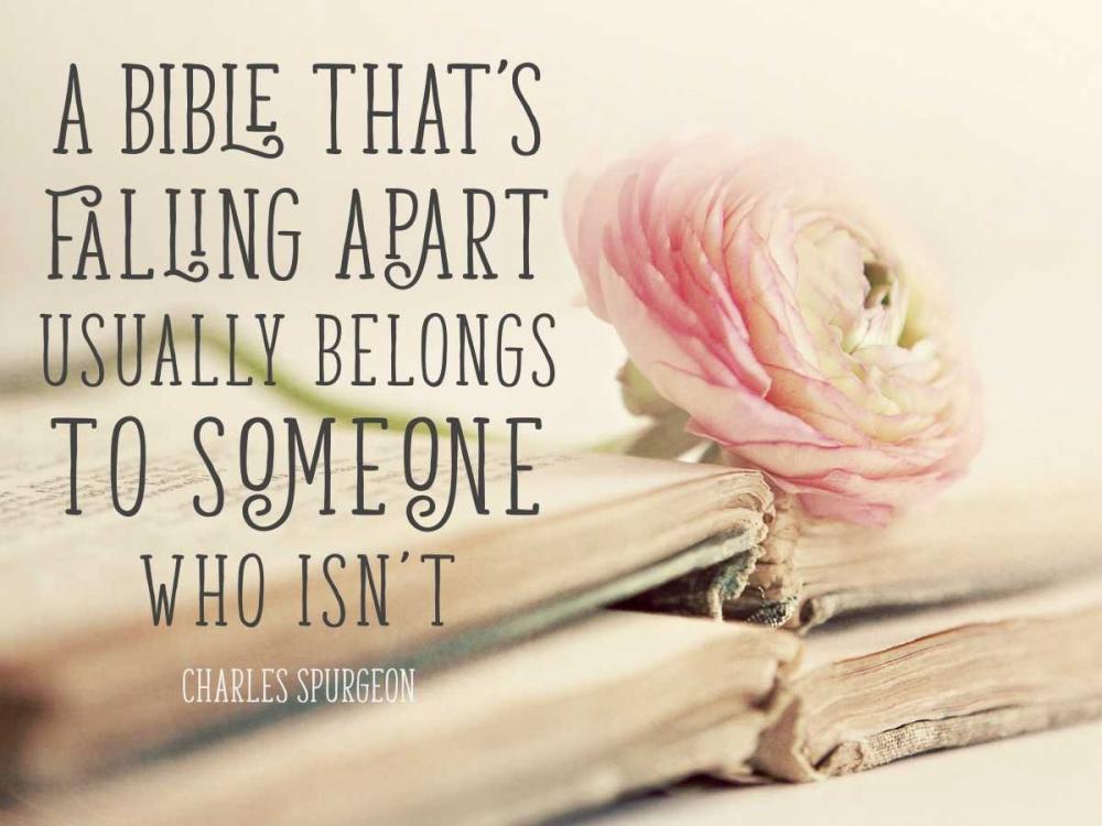 Bible Quote Gardner, Sarah 159713