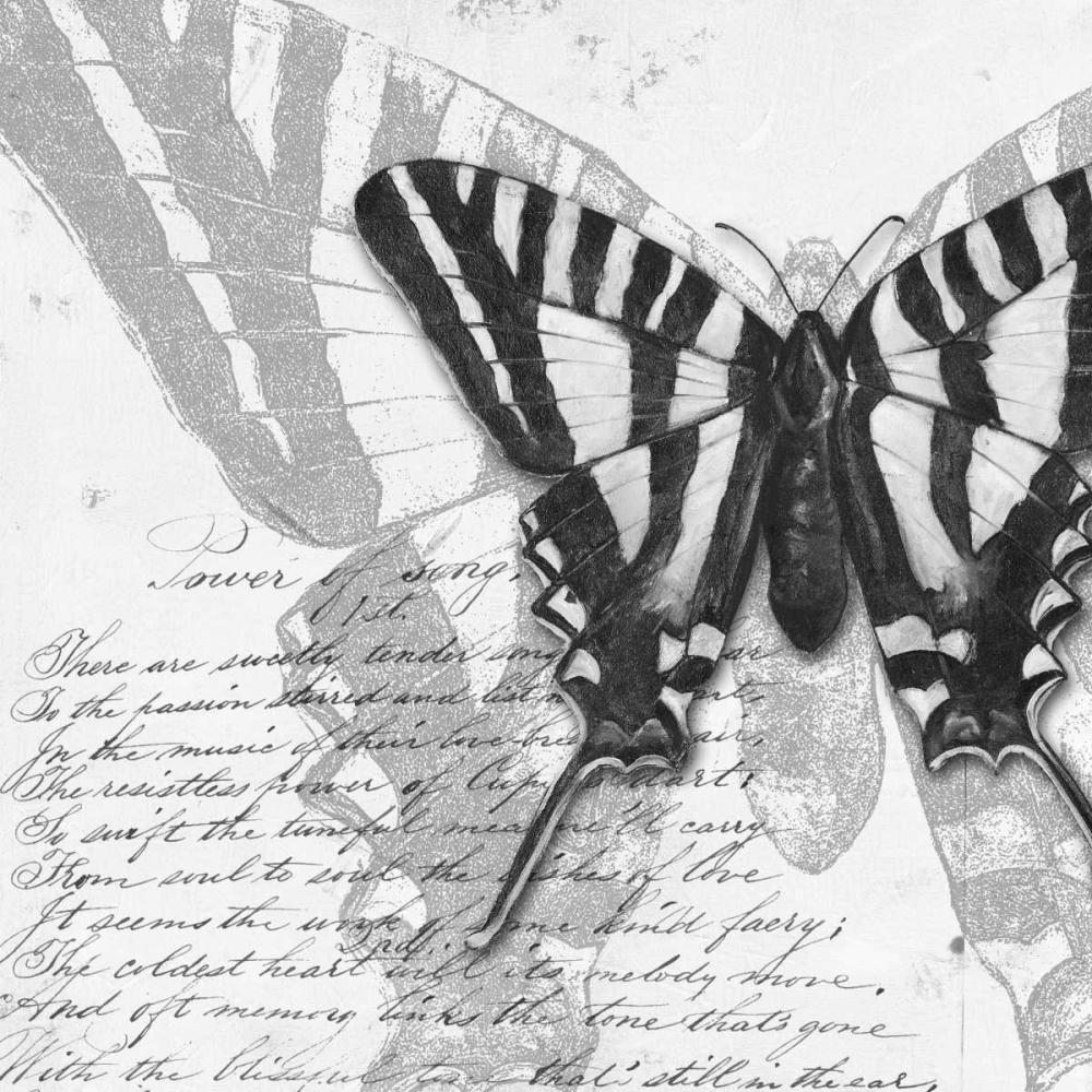 Butterflies Studies II Pinto, Patricia 51838