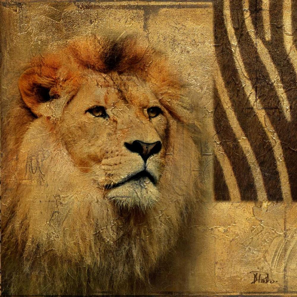 Elegant Safari II (Lion) Pinto, Patricia 159027