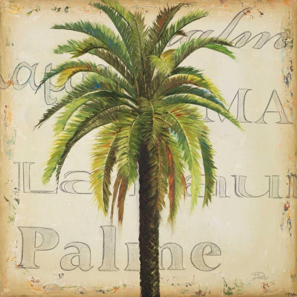 La Palma III Pinto, Patricia 23762