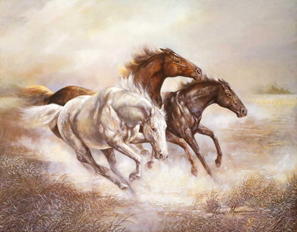 Wild Horses I Manning, Ruane 158990