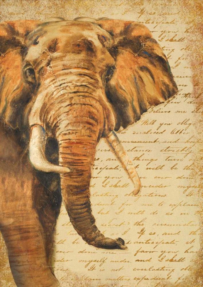 Madagascar Safari III Pinto, Patricia 24199