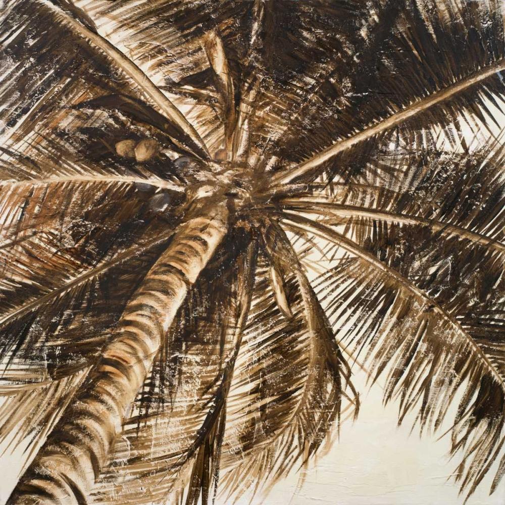 Coconut Palm II Pinto, Patricia 51749