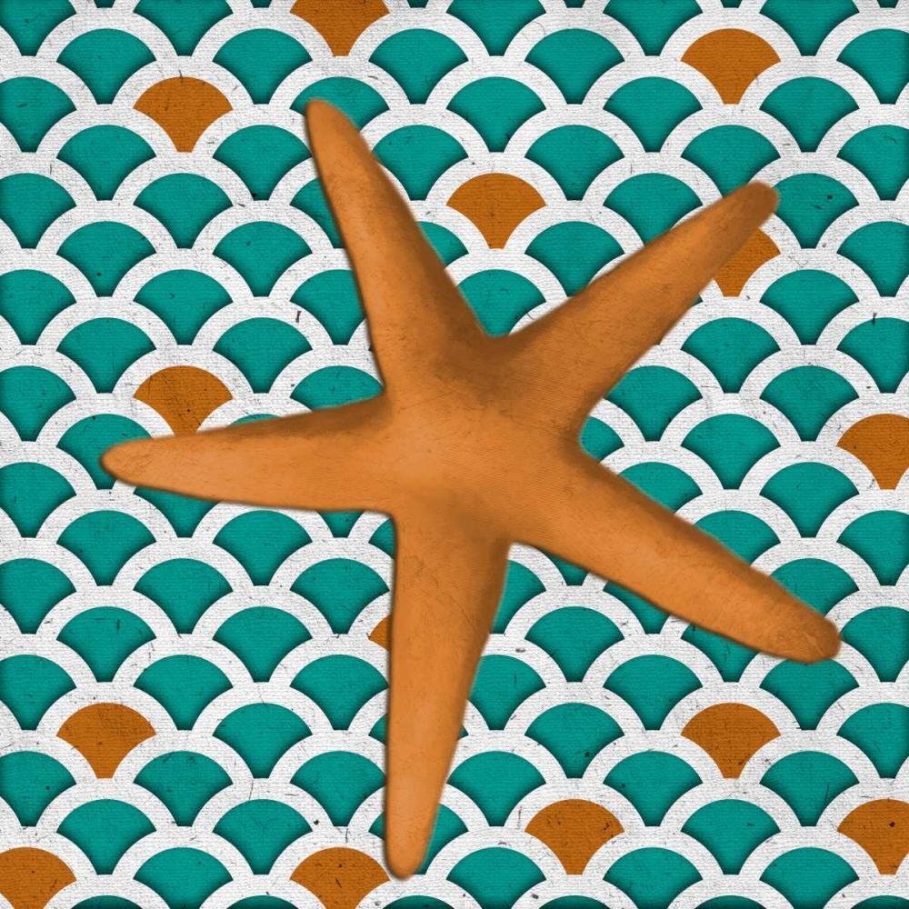 Patterned Shell II Medley, Elizabeth 52100