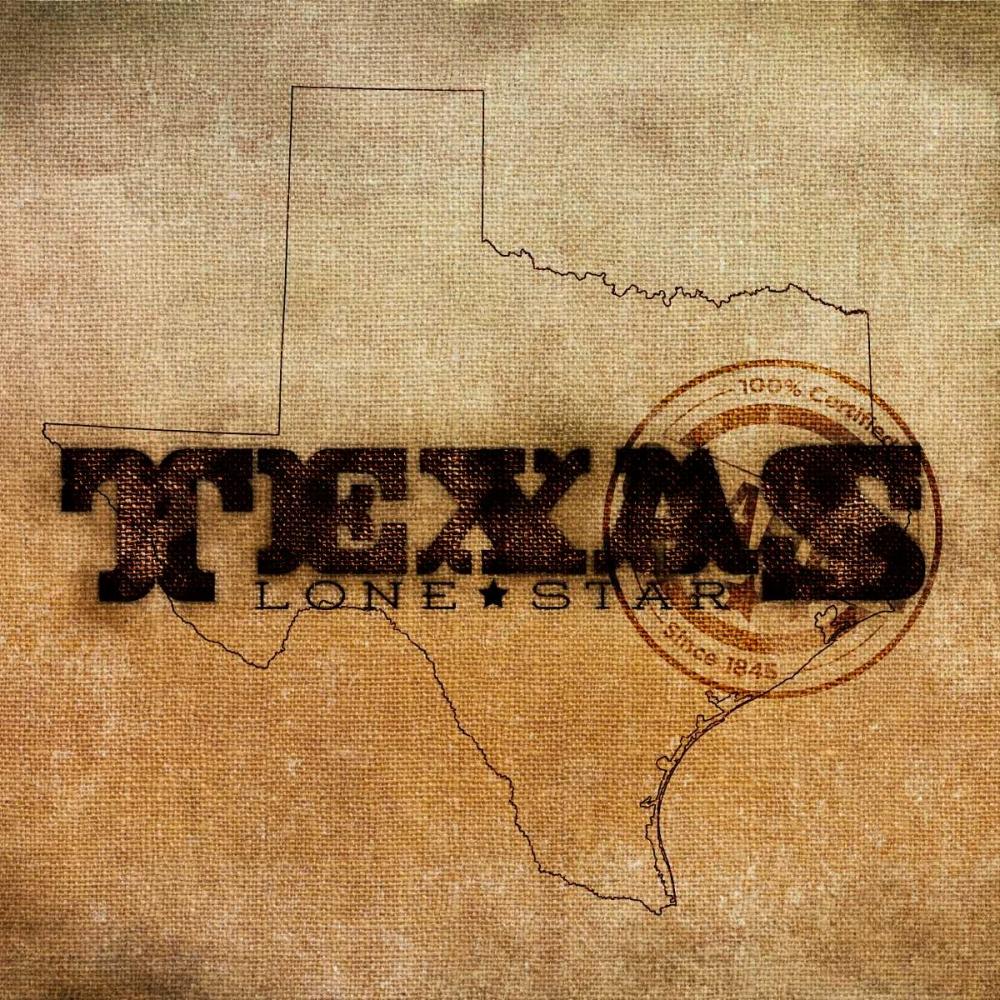 Texas Lone Star SD Graphics Studio 52008