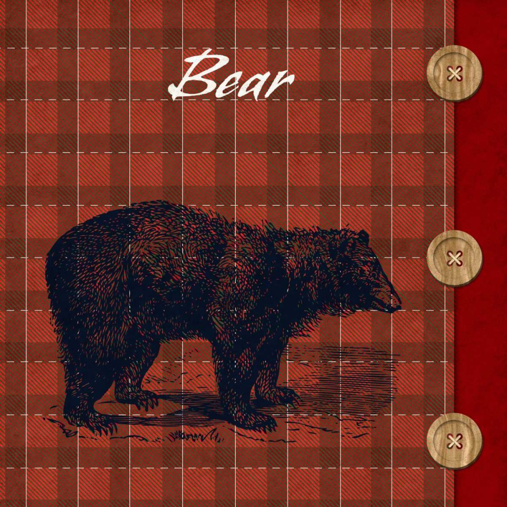 Flannel Bear SD Graphics Studio 52200