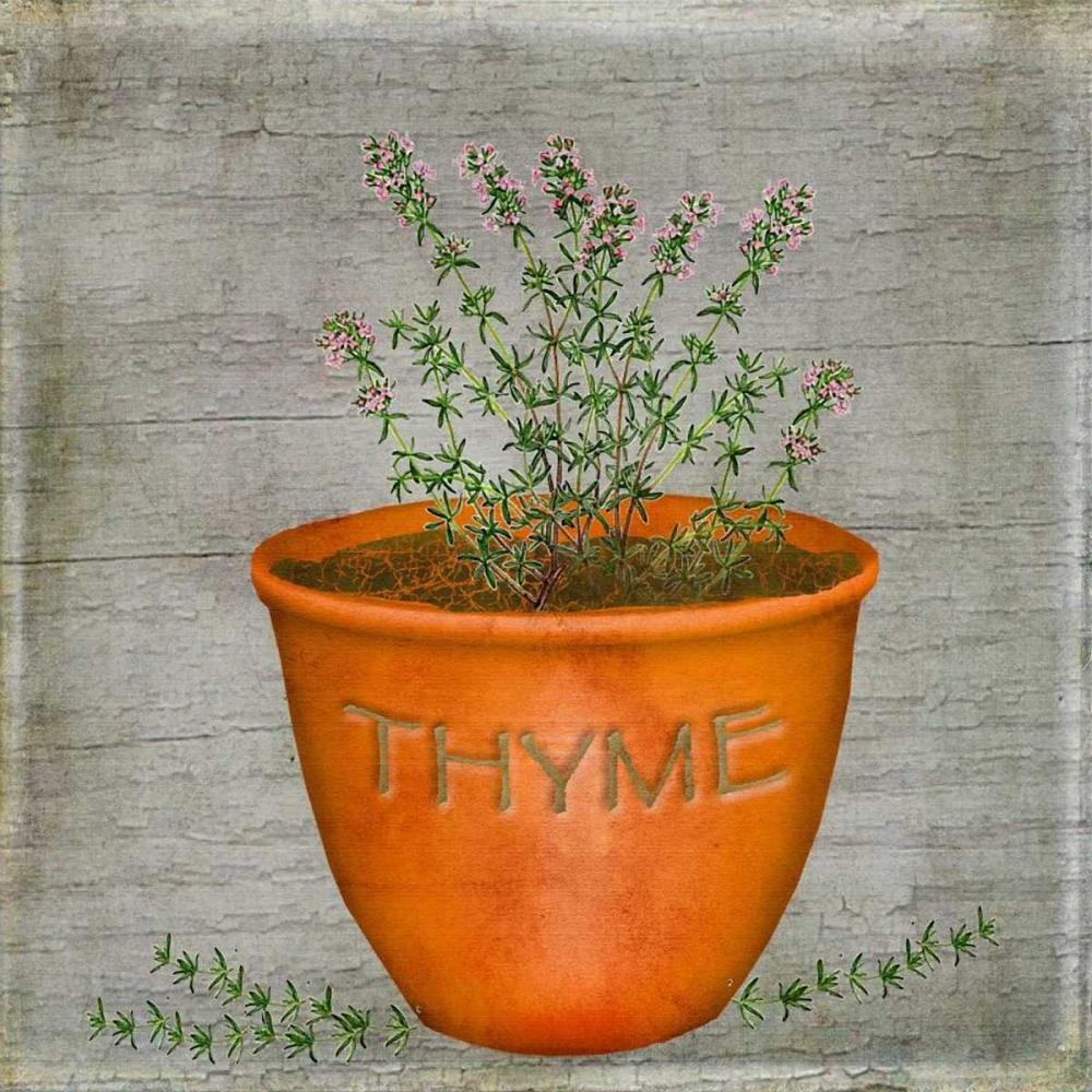 Herb Thyme Albert, Beth 37159