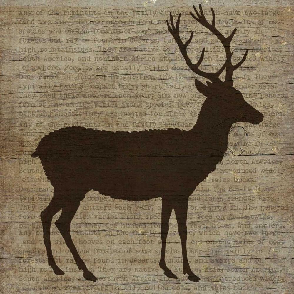 Deer Albert, Beth 37135