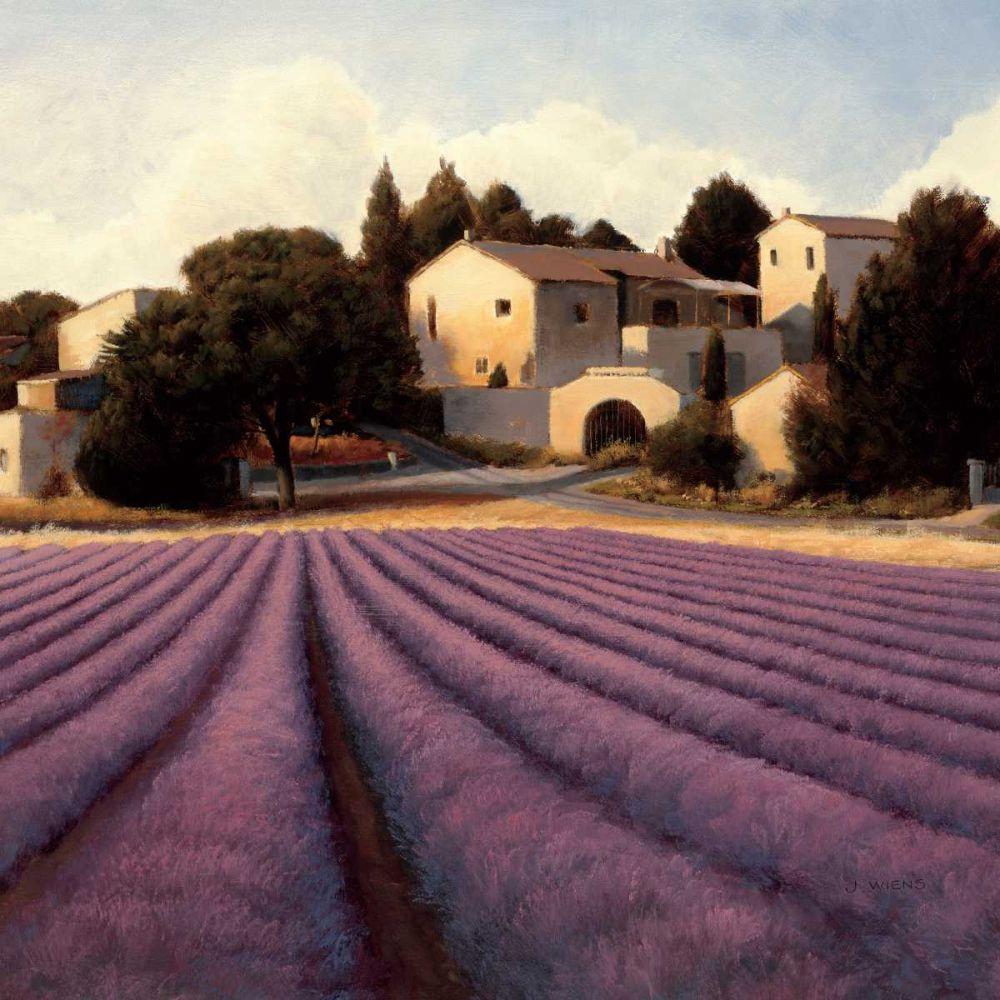 Lavender Fields I Wiens, James 33505