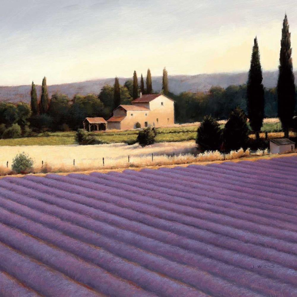 Lavender Fields II Wiens, James 33506