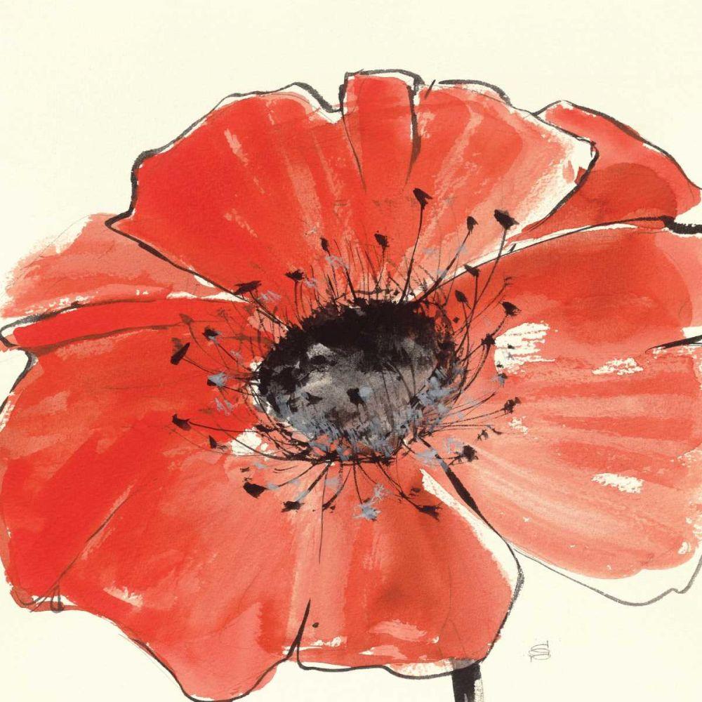 Spring Poppy IV Paschke, Chris 33800