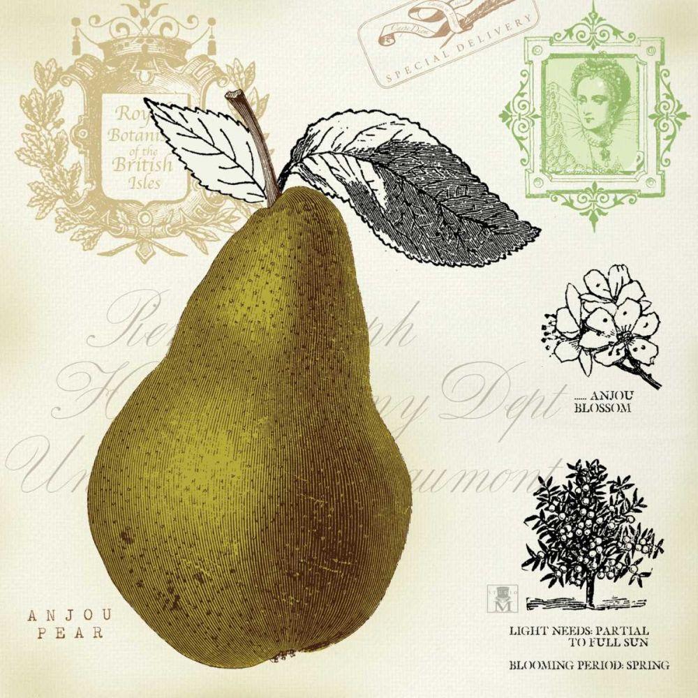 Pear Notes Studio Mousseau 33700