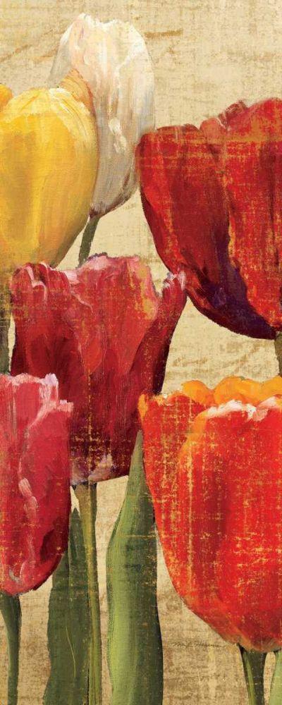 Tulip Fantasy on Cream III Hageman, Marilyn 33879