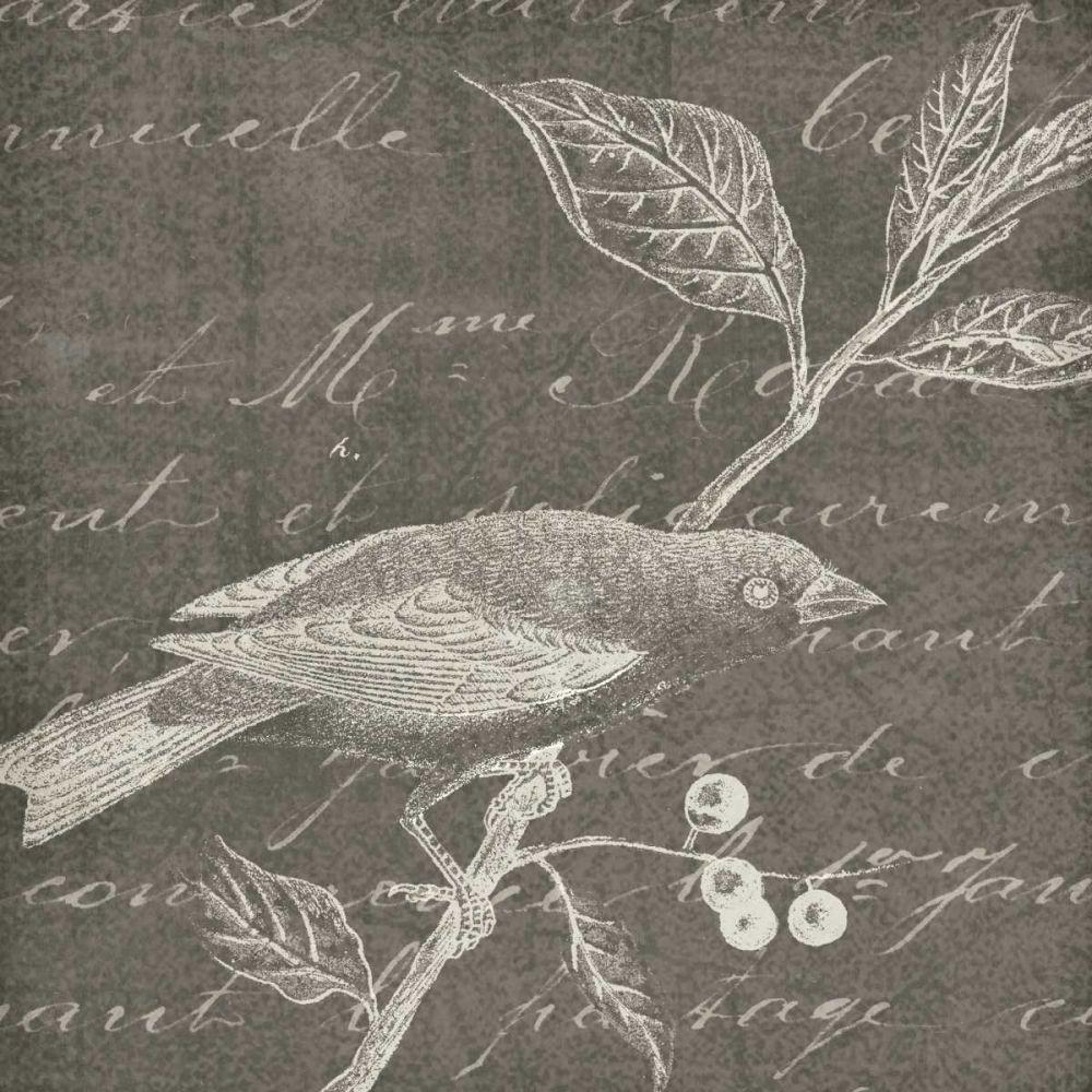 Botanical Beauty Chalk Square I Wild Apple Portfolio 141978