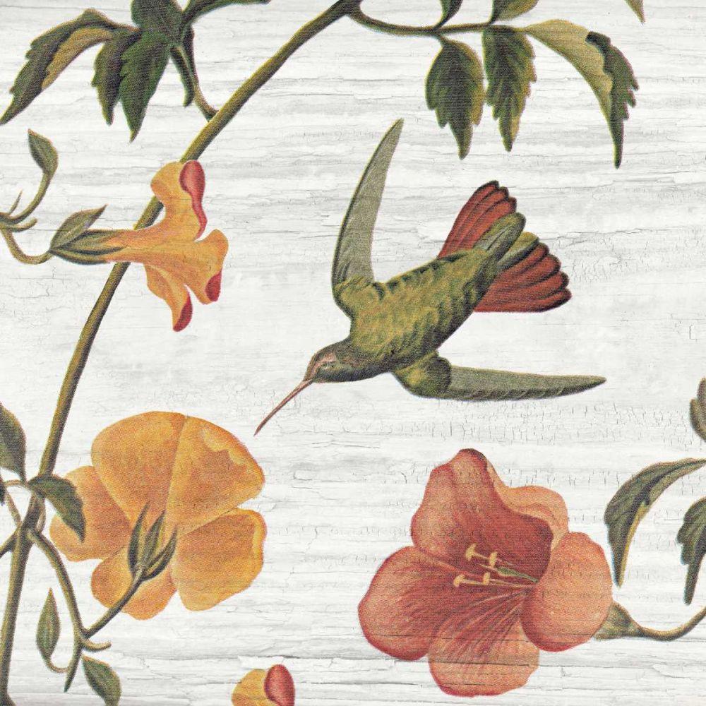 Vintage Hummingbird I Wild Apple Portfolio 41145