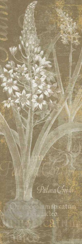 Flower Lines II Schlabach, Sue 73390