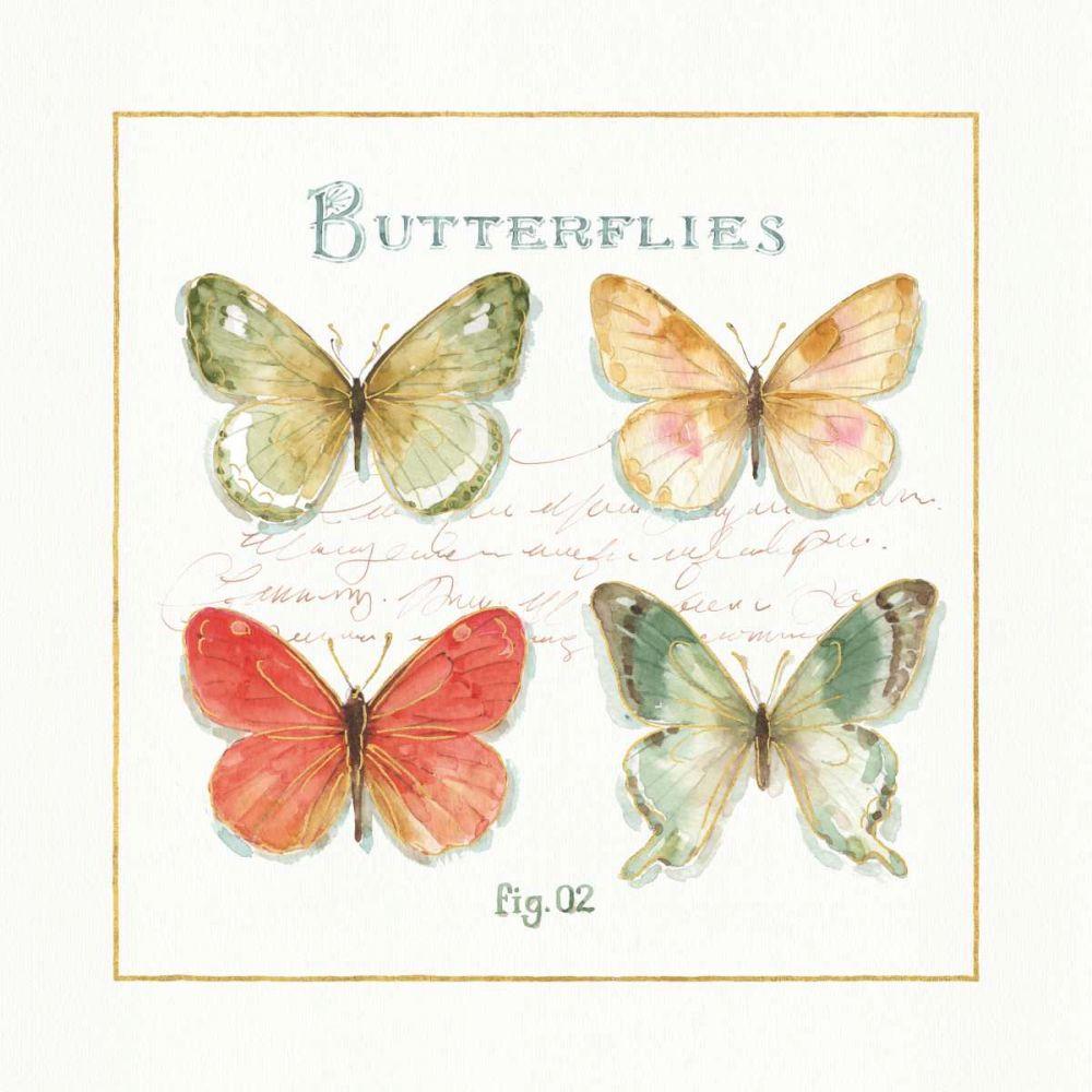 Rainbow Seeds Butterflies III Lisa, Audit 93260