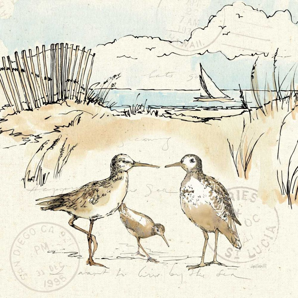 Coastal Breeze XI Tavoletti, Anne 73500