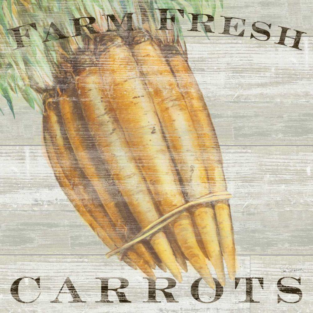 Farm Fresh Carrots Schlabach, Sue 71995