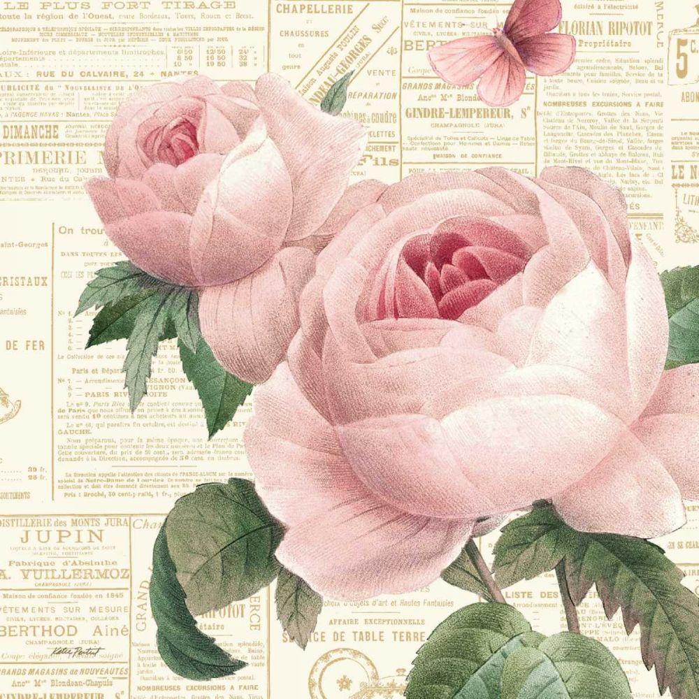 Roses in Paris VI Pertiet, Katie 77830