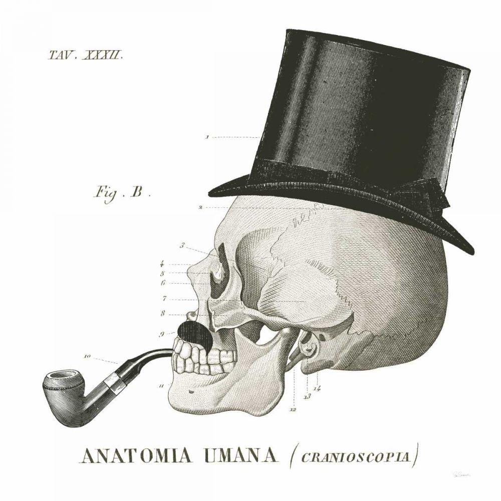 Dandy Bones II Schlabach, Sue 78319