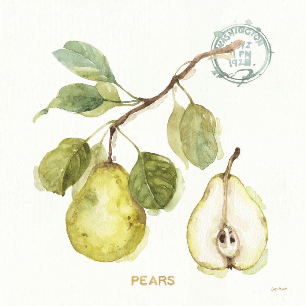My Greenhouse Fruit I Lisa, Audit 93307