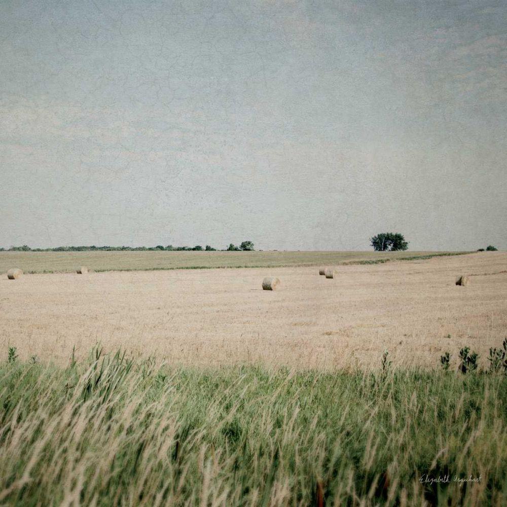 Neutral Country II Crop Urquhart, Elizabeth 85038