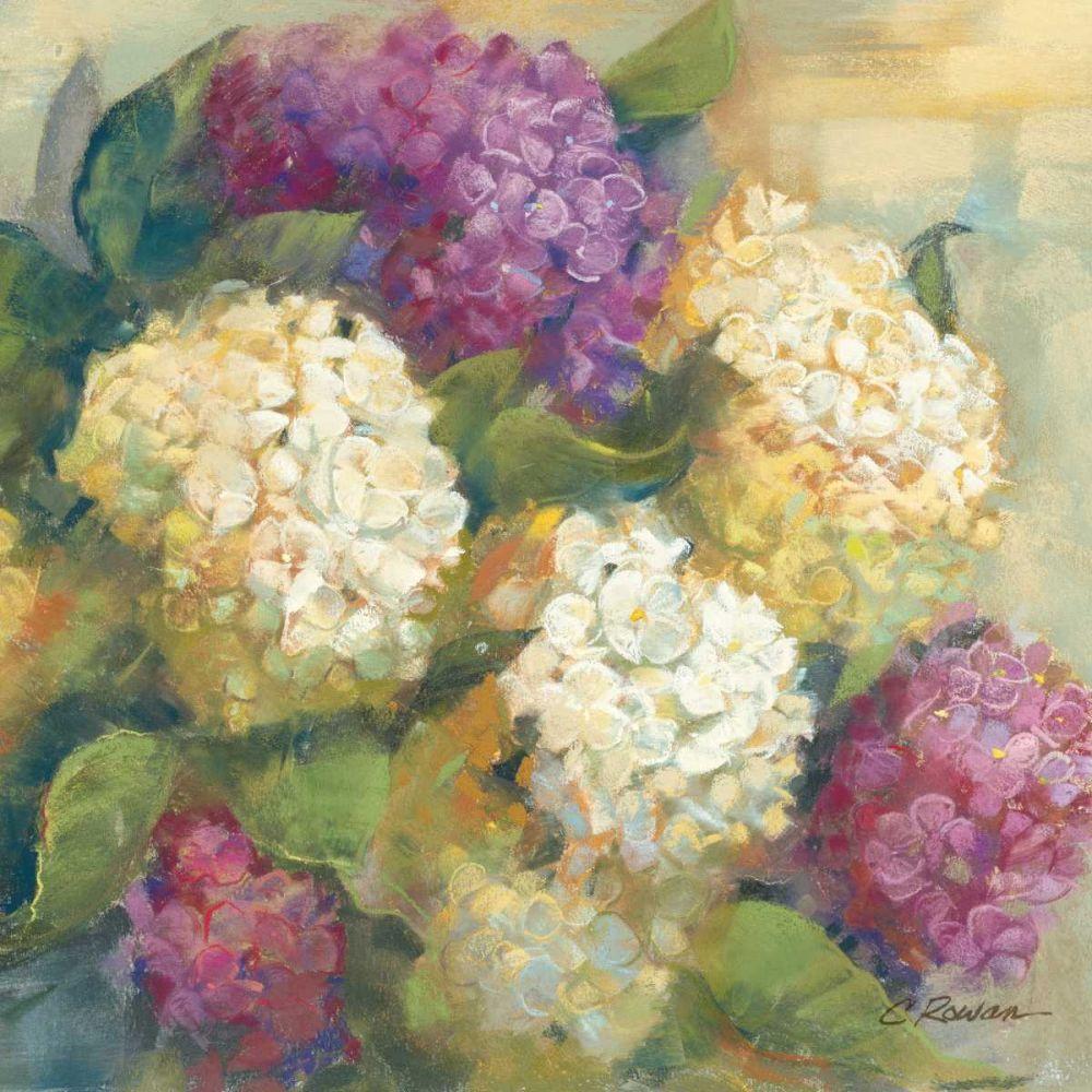Hydrangea Delight II Rowan, Carol 18615