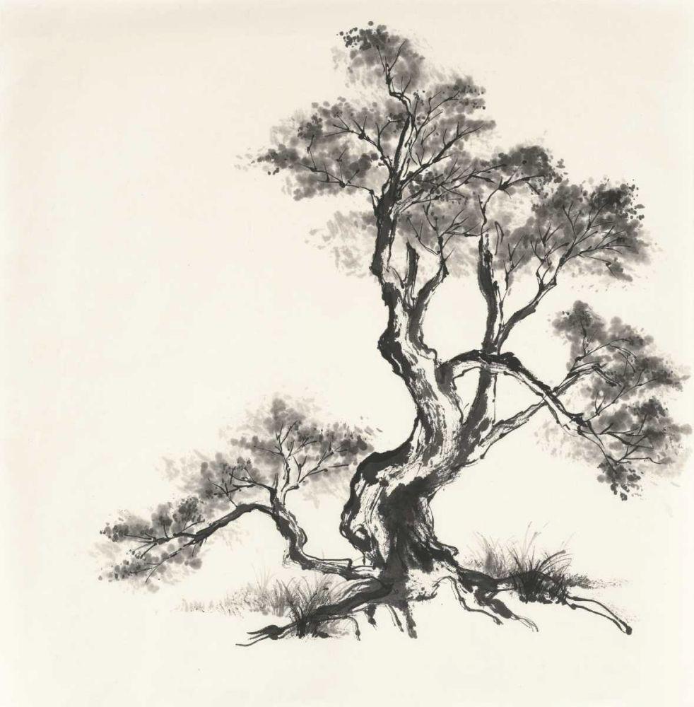 Sumi Tree I Paschke, Chris 140326