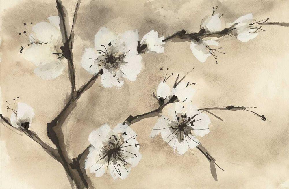 Spring Blossoms IV Paschke, Chris 126084
