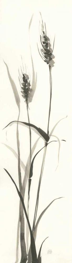 Wild Grass I Paschke, Chris 151513