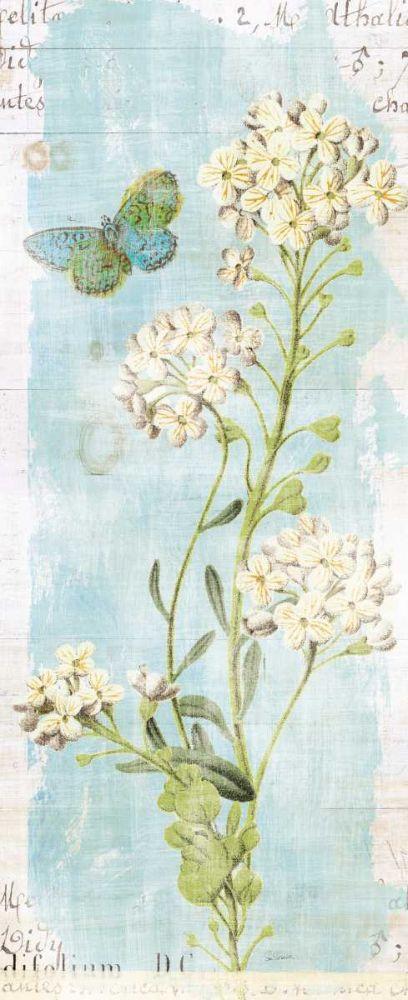 Botany Blue III Schlabach, Sue 149141