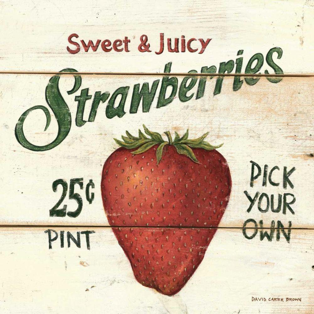 Sweet and Juicy Strawberries Brown, David Carter 19115