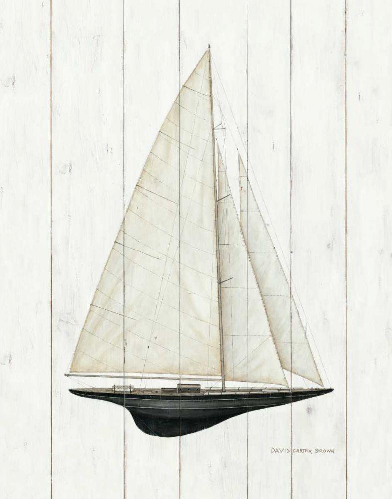 Sailboat II Brown, David Carter 32587