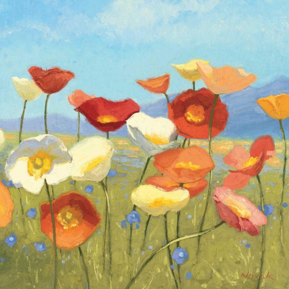 Springtime Meadow II Novak, Shirley 34030