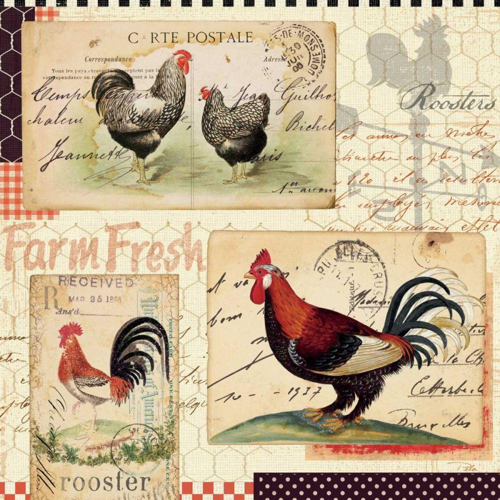Rooster Farm II Pelletier, Alain 34138