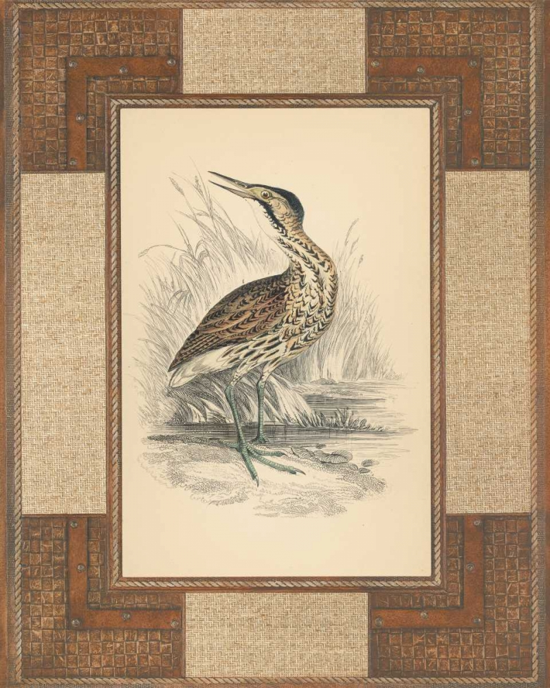Marshland Bittern Reynolds, Alastair 20632