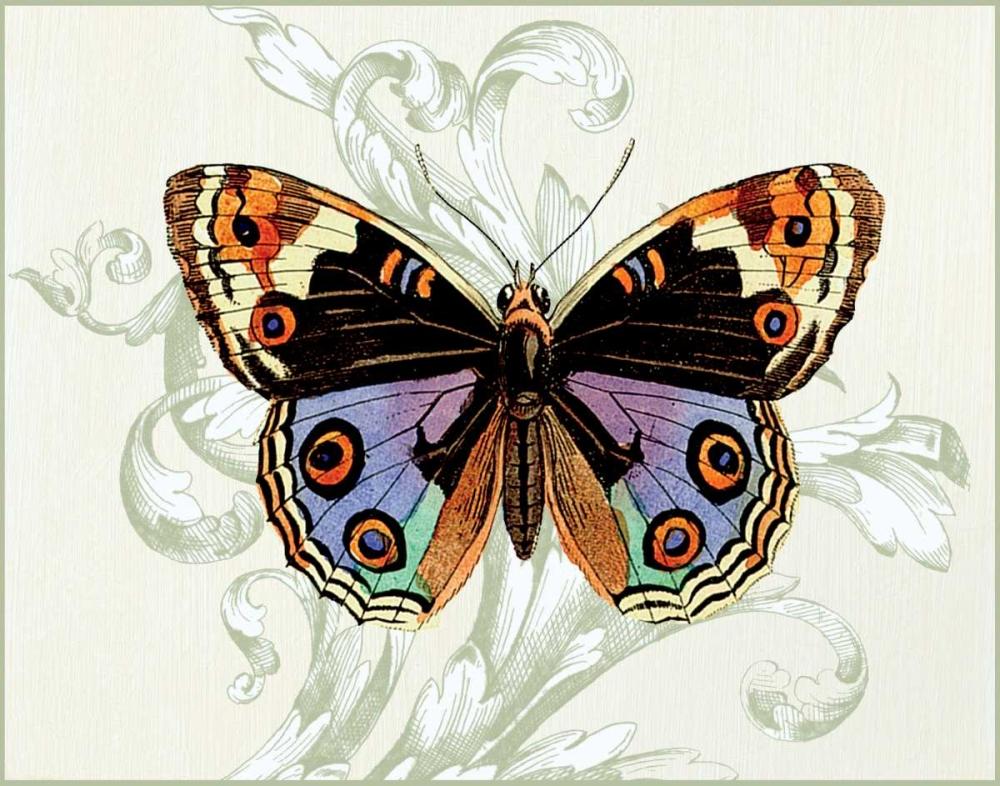 Butterfly Theme I Davies, Susan 20760