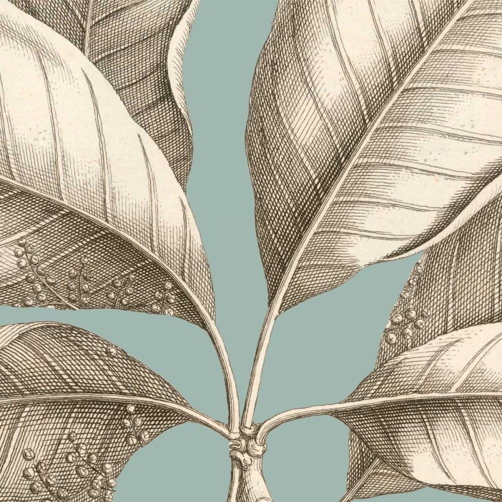 Tropical Varieties I Lawrence, David  164361