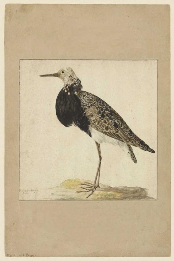 Standing Waltz, Anne 166059