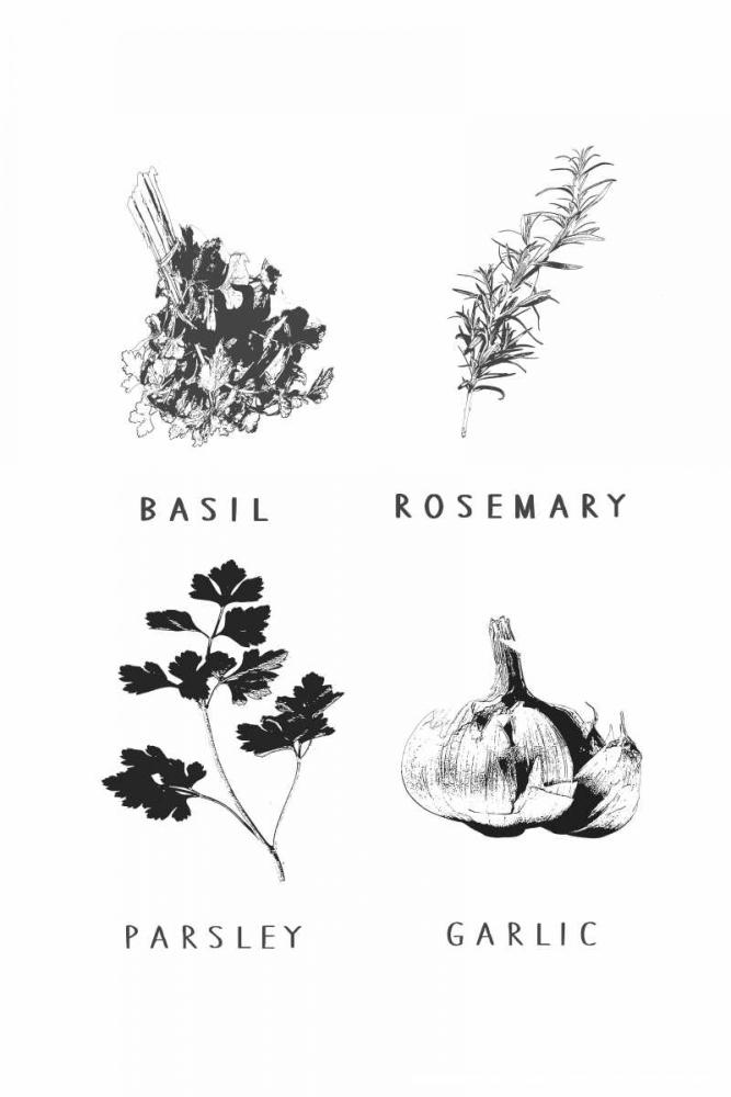 Kitchen herbs Waltz, Anne 166131